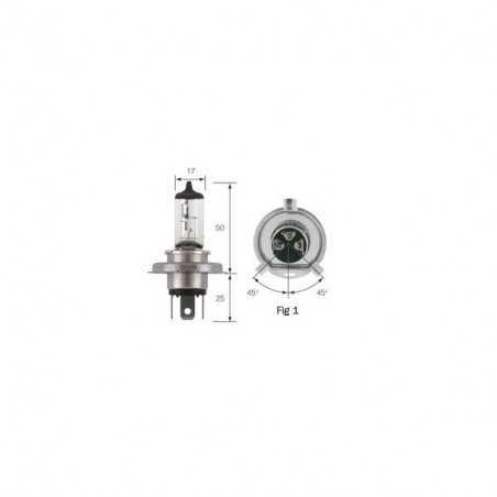 Ampoule 24V H4 75/70W