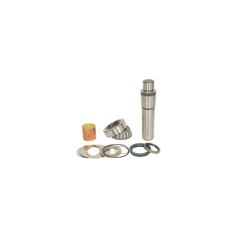 Kit pivot de fusée de roue pour Scania Série 4