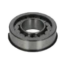 Roulement à rouleaux cylindrique 45X100X31 pour Man