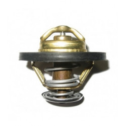 Thermostat pour Renault Maxity
