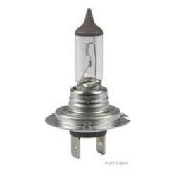 Ampoule H7 Universal
