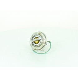 Thermostat pour SCANIA P